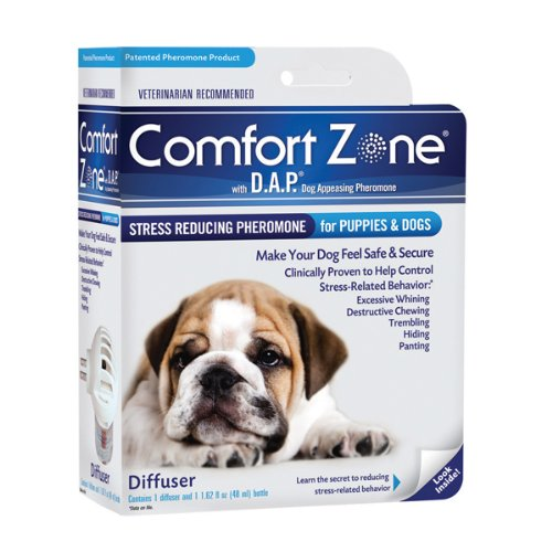Dog Anxiety Separation Relaxants