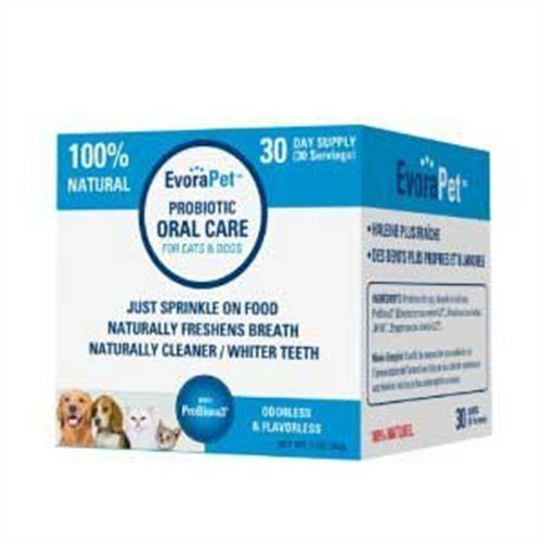 EvoraPet Probiotic Oral Car for Cats and Dogs
