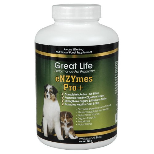 Great Life Enzymes Pro Pet Digestive Remedy