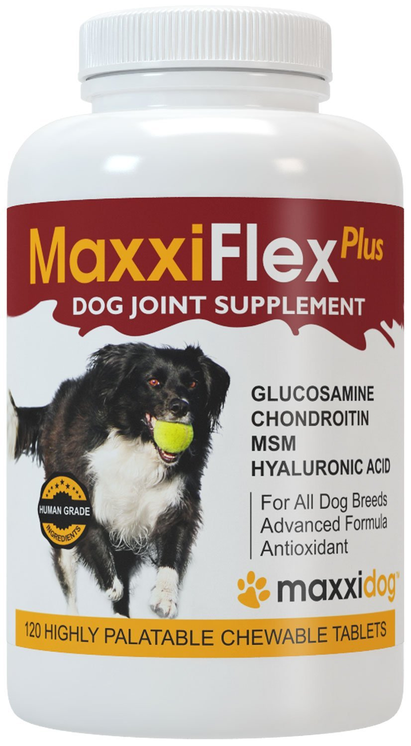 MaxxiFlex Plus Dog Joint Supplement