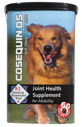 Nutramax Cosequin Soft Chews Plus MSM Joint Health Supplement Chews