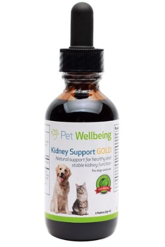 Pet Wellbeing Kidney Support Gold for Cats